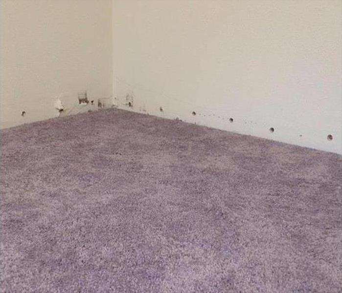 the room showing dry carpet, weep holes drilled by baseboard area